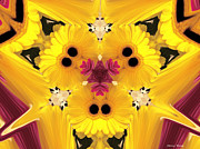 Abstract Flowers Photos - Kitty Petals by Cheryl Young