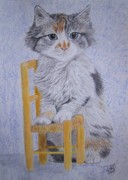 Chair Drawings Framed Prints - Kitty with chair Framed Print by Cybele Chaves