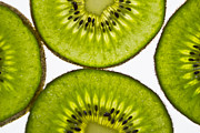 Kiwi Photo Originals - Kiwi by Chris Cardwell