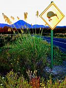Signpost Posters - Kiwi Crossing Poster by Kevin Smith
