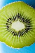 Kiwi Art Photo Framed Prints - Kiwi Cut Framed Print by Ray Laskowitz - Printscapes