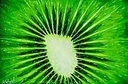 Kiwi Art Originals - Kiwi Expolosion Original Acrylic Painting on Canvas by Michael  Arnold