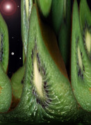 Exotic Fruit Prints - Kiwi Space Print by Terence Davis