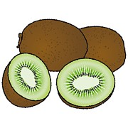 Kiwi Digital Art Prints - Kiwi Print by Wolfgang Herzig