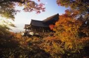 Clear Fall Day Posters - Kiyomizu Temple Poster by Allan Seiden - Printscapes