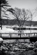 Knapp Creek At Seven Pines Lodge Print by Cynthia Dickinson