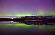 Knik Aurora Reflections Print by Sam Amato