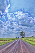 Gravel Road Prints - Knowing The Right Way Print by Cathy  Beharriell