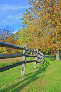 Split Rail Fence Photos - Knox Farm 8449 by Guy Whiteley