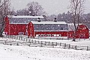 Red Barn Prints - Knox Farm Snowfall Print by Don Nieman
