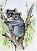 Koala Paintings - Koala and baby by Anne Gardner