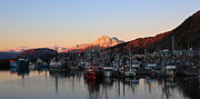 Kodiak Posters - Kodiak Boat Harbor Poster by Sam Amato