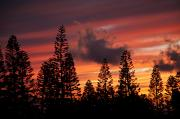 Awesome Prints - Kohala Sunset II Print by Peter French