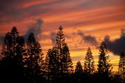 Awesome Prints - Kohala Sunset III Print by Peter French