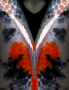 Koi Digital Art - Koi - Double Vision by Bob Snell