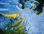 Fish Digital Art Originals - Koi Blue by Lawrence P Kaster