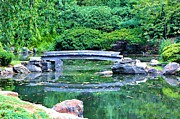 Garden Bridge Posters - Koi Pond Pondering - Japanese Garden Poster by Bill Cannon