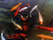"""texas Artist"" Mixed Media Posters - Koi Pond Watercolor Poster by Fred Jinkins"