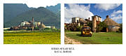 Old Mills Framed Prints - Koloa Sugar Mill Diptych Framed Print by Roger Mullenhour