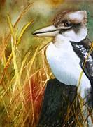 Kookaburra Dreaming Print by Therese Alcorn