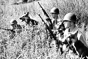 Guard Dog Posters - Korean War Soldiers With Dogs From 26th Poster by Everett
