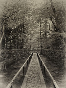 Buddhism Metal Prints - Koto-in Zen Temple Forest Path - Kyoto Japan Metal Print by Daniel Hagerman