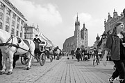 Krakow Prints - Krakow Carriages Print by Robert Lacy