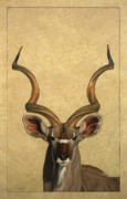 Ears Drawings Posters - Kudu Poster by James W Johnson