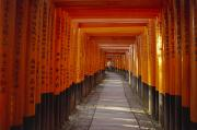 Rita Ariyoshi Prints - Kyoto Torii Print by Rita Ariyoshi - Printscapes