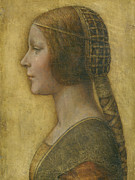 Profile Drawings Framed Prints - La Bella Principessa - 15th Century Framed Print by Leonardo da Vinci