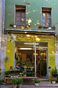 Outdoor Flower Shop Posters - La Fleur des Dentelles Poster by Dany Lison Photography