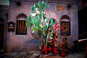 Film Studio Framed Prints - La Hacienda in Old Tuscon AZ Framed Print by Susanne Van Hulst