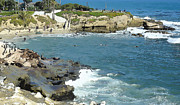 Ocean Digital Art Originals - La Jolla Cove - Early Morning Swim by Russ Harris