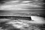Sea Wall Framed Prints - La Jolla Seawall Framed Print by Tanya Harrison