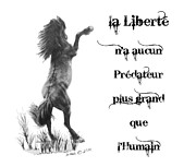 Custom Pet Drawing Prints - la Liberte Print by Marianne NANA Betts