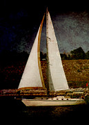 Nautical-boats-ships-waves - La Paloma Blanca Boat by Susanne Van Hulst