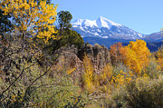 Travel Sightseeing Prints - La Sal Mountains in Fall Print by Gary Whitton