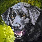 Labrador Retriever Drawings - Lab Out of the Pond by Susan A Becker
