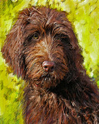 Puppy Digital Art Framed Prints - Labradoodle Framed Print by Jane Schnetlage