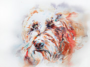 Labradoodle Print by Stephie Butler