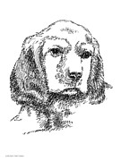 Clip Drawings Prints - Labrador-Portrait-Drawing Print by Gordon Punt