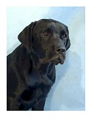 Labrador Digital Art - Labrador Retriever 1511 by Larry Matthews
