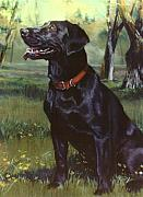 Black Paintings - Labrador Retriever by Jean Hildebrant