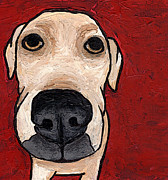 Labrador Mixed Media Framed Prints - Labrador  Framed Print by Stephanie Gerace