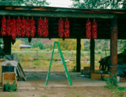 Canon Posters - Ladder and Ristras Sopyns Fruit Stand Rinconada NM Poster by Troy Montemayor