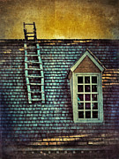 Clapboard House Prints - Ladder on Roof Print by Jill Battaglia