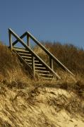 York Beach Metal Prints - Ladder to the Beach Metal Print by Rosemary Hawkins