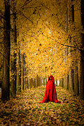 Autumn Leaf Photos - Lady in Red - 5 by Okan YILMAZ