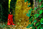 Autumn Leaf Photos - Lady in red - 8 by Okan YILMAZ