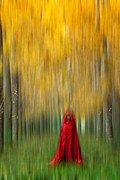 Trees Digital Art Originals - Lady in red - 9 by Okan YILMAZ